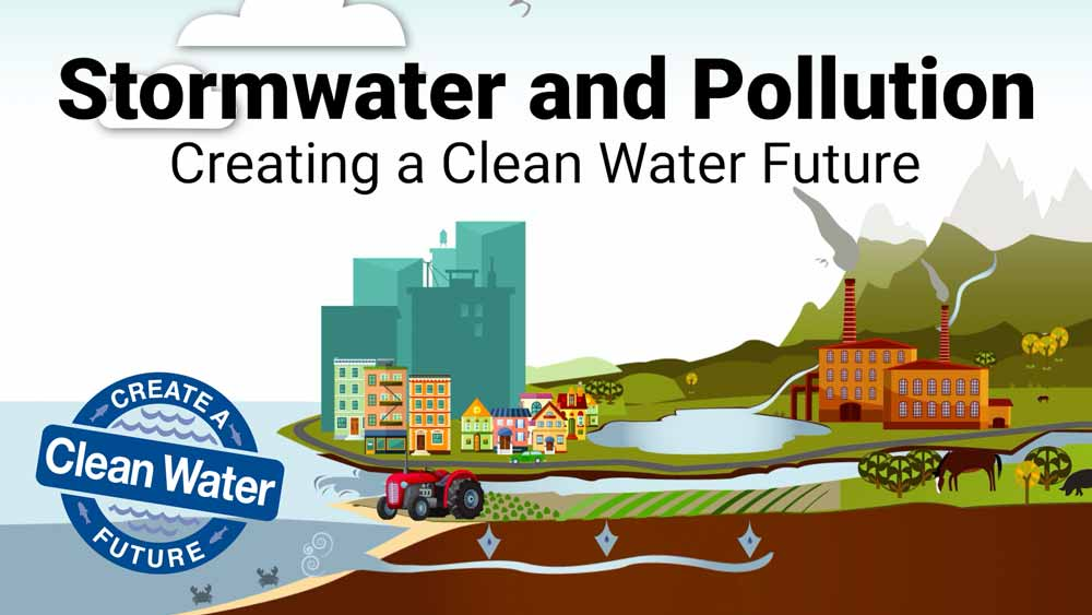 Stormwater and Pollution Video