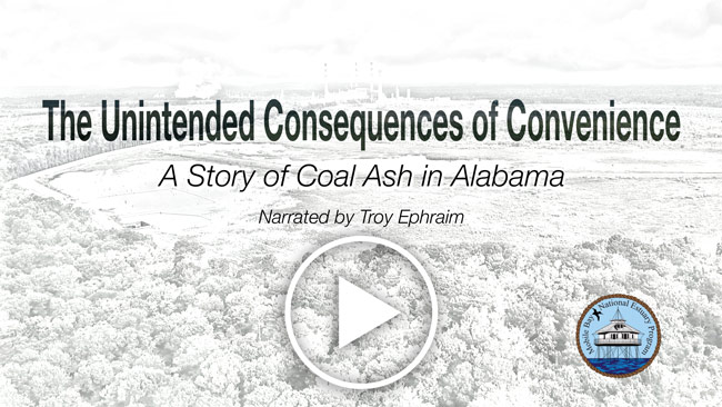 The Unintended Consequences of Convenience